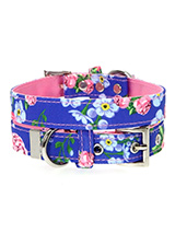 Pink / Blue Floral Burst Fabric Collar - Our Floral Burst pattern collar is a rich contemporary style and the floral pattern is right on trend. It is lightweight and incredibly strong. The collar has been finished with chrome detailing including the eyelets and tip of the collar. A matching lead, harness and bandana are available to purcha...